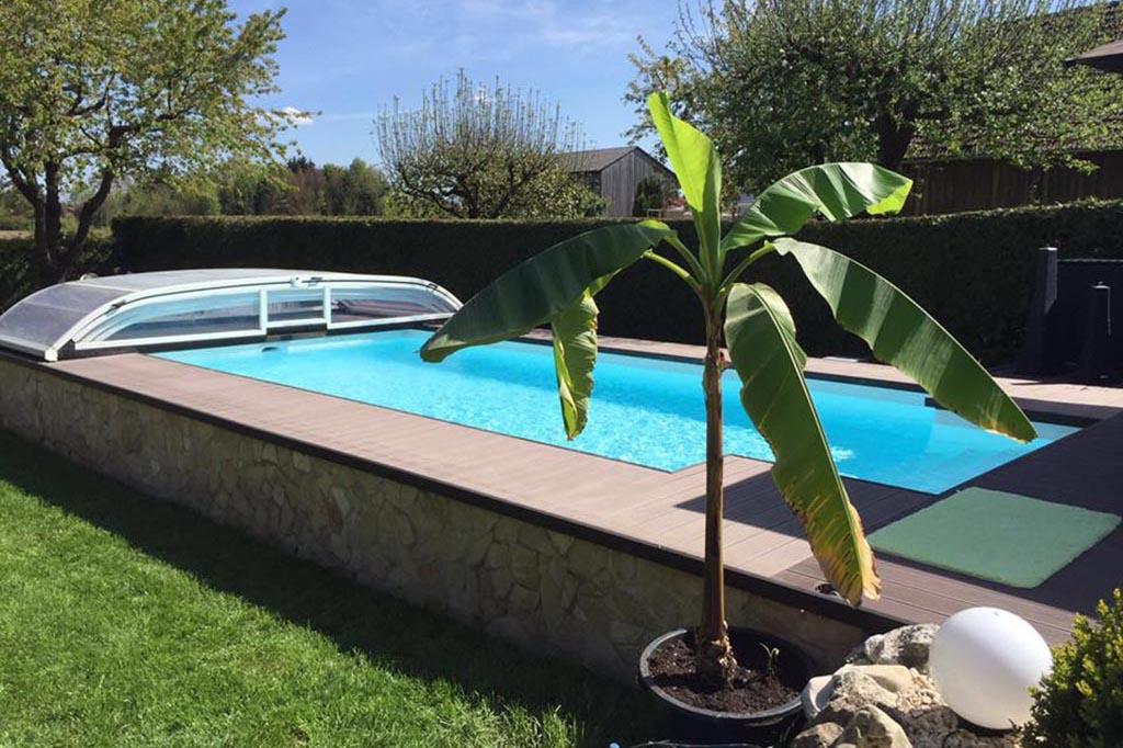Swimmingpool mit Poolüberdachung und Bananenpflanze